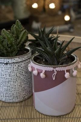 Bohm by Mlle - plantes grasses - pots recyclés - fabriqué en France - pompom - rose - violet